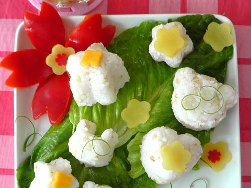 Japanese bento - cherry blossom picnic